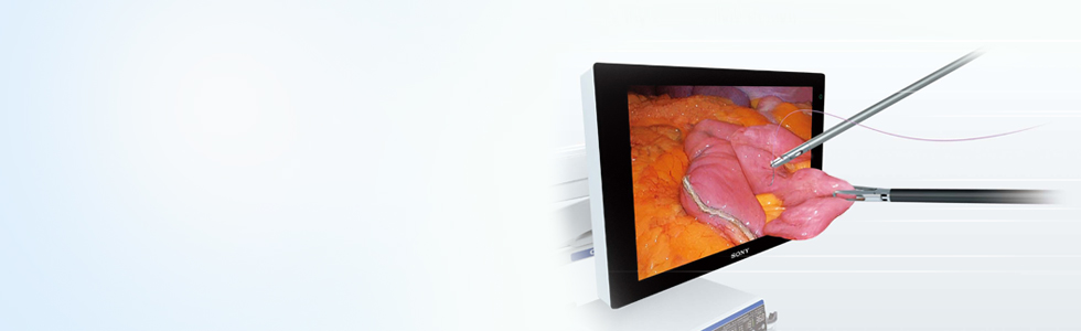 3D Imaging Solution | Products | Olympus Medical Singapore